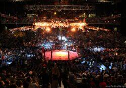 UFC apunta a Arizona como nueva sede