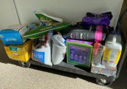 Distribución de suministros para mascotas