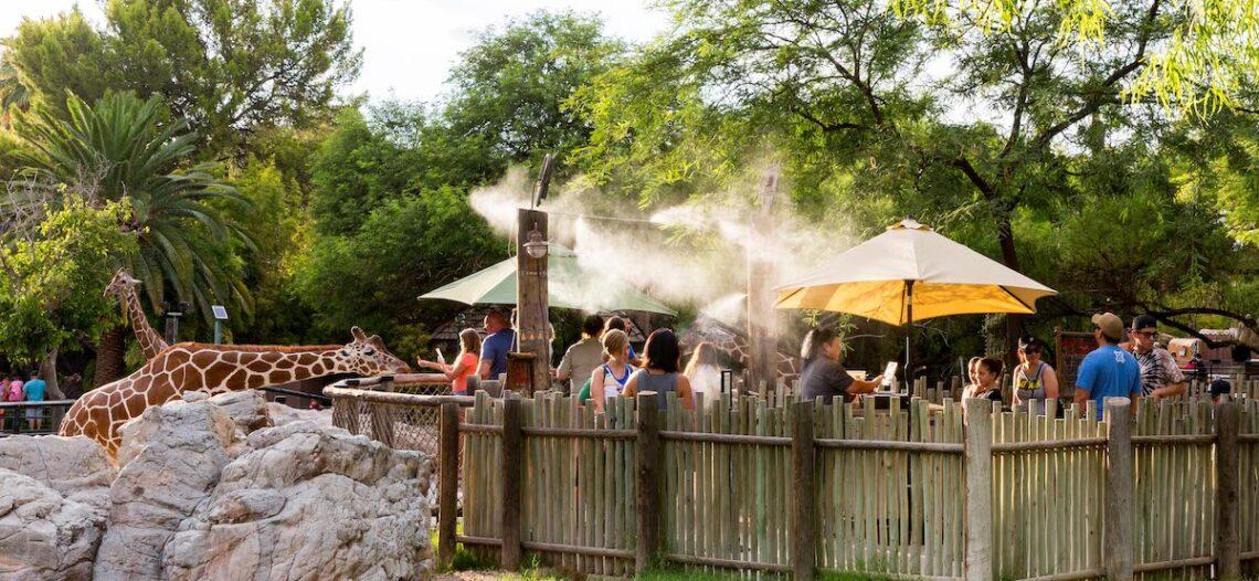Nuevas atracciones en Reid Park Zoo
