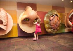 Reabre el Museo para Niños